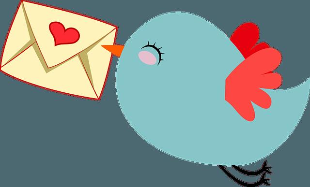 animal, anthropomorphized, bird