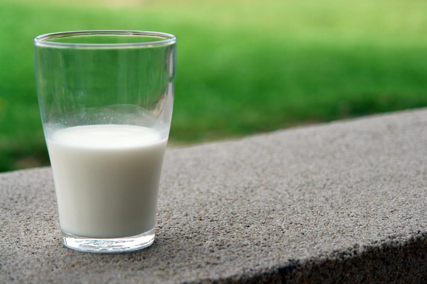 The Health Benefits of Cow Milk Every Parent Needs to Know